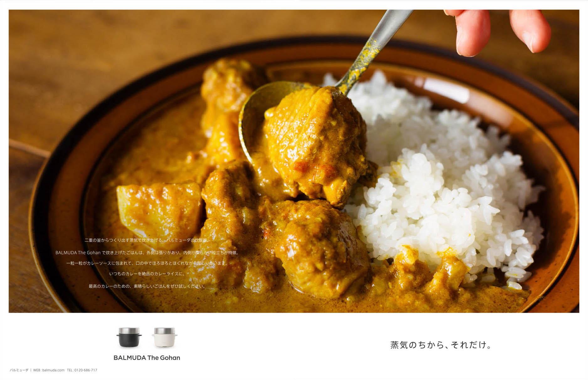 Rice_BALMUDA_170428